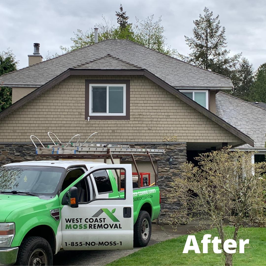 Surrey Roof Cleaning Asphalt Single
